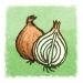 onions (Illustration von Till Lassmann / Sebastian Koch)